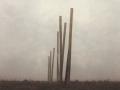 Pfaehle im Nebel