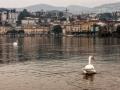 2015-03-Lugano-072.jpg