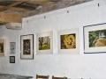 Ausstellung Guggenmühle 3
