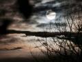 Winter-Nebel-Mond